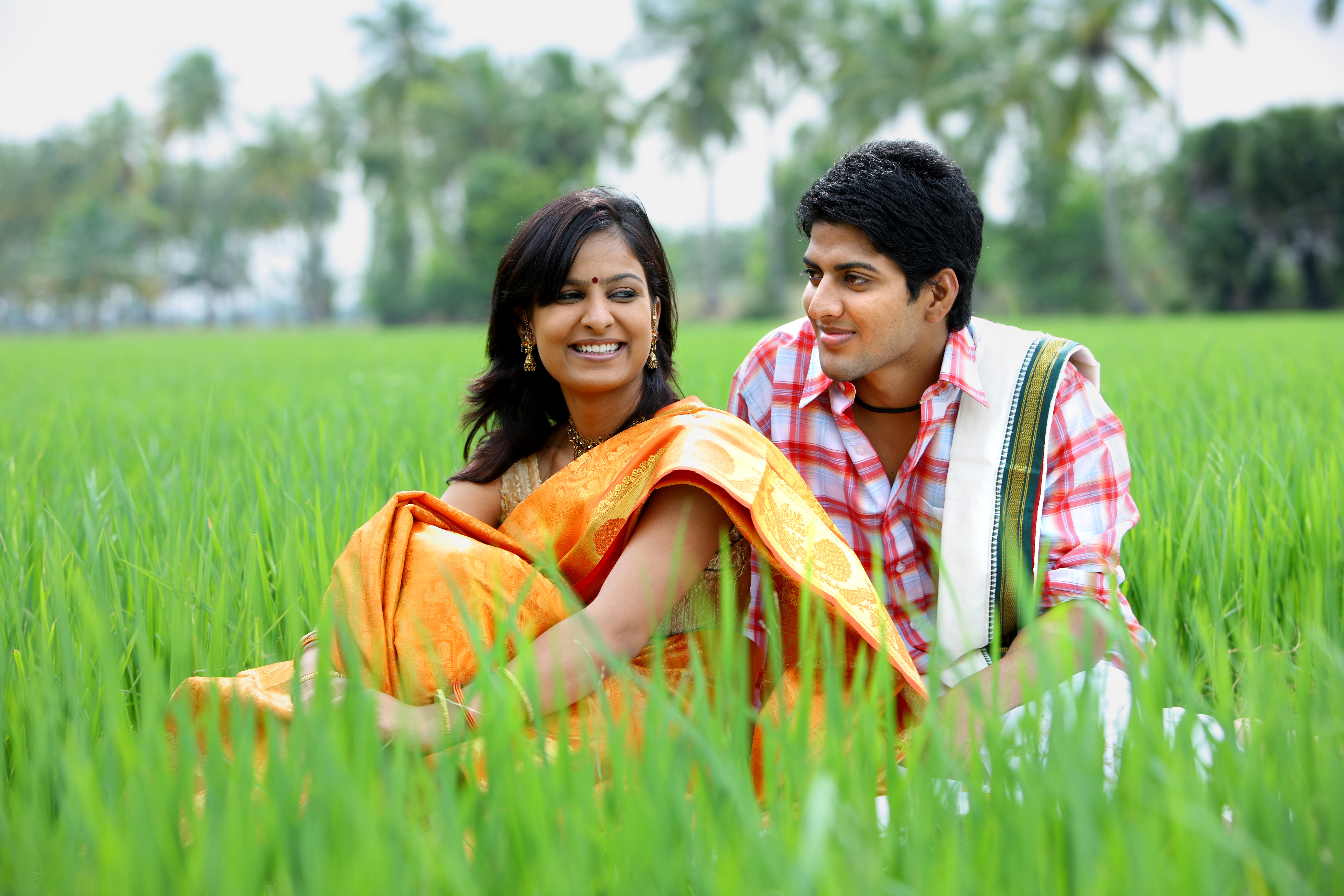 stockvault-couple-sitting-in-a-paddy-field107763