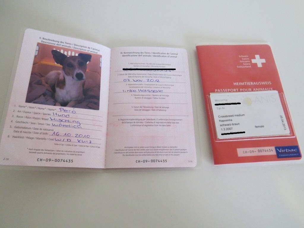 Passaporte canino