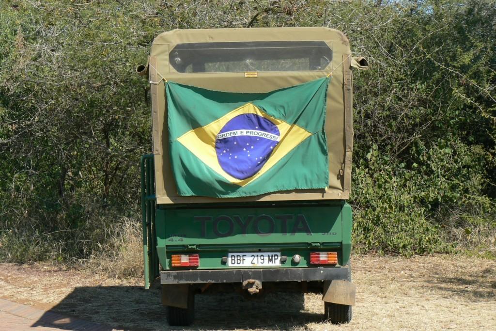 Kruger Oark_Safari durante copa do mundo