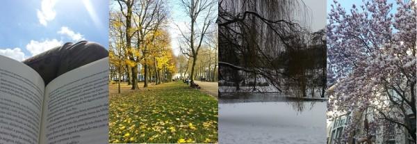 Verão, outono, inverno e primavera