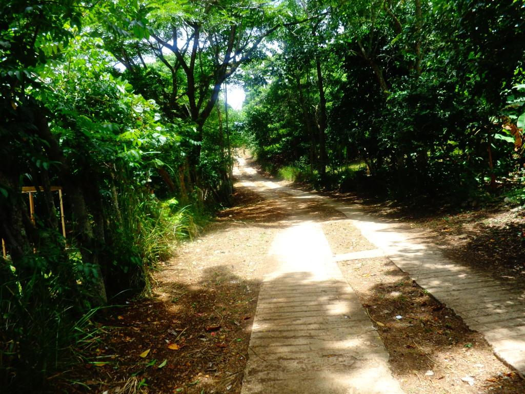Caminho em Vallue