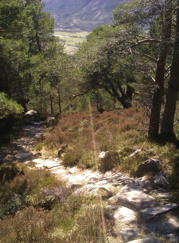 Creag Choinnich, em Braemar, Cairngorms National Park
