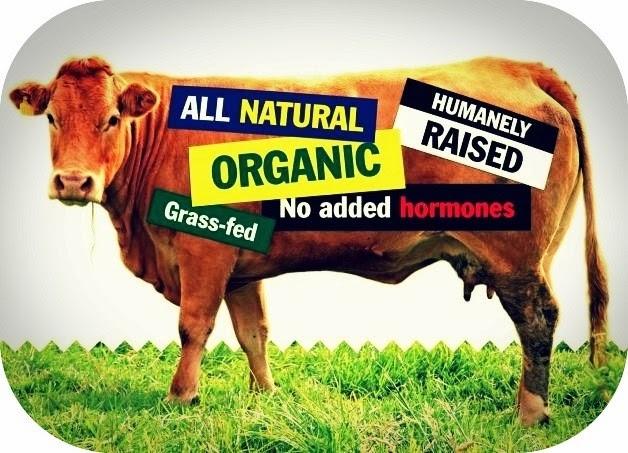 Foto: www.planetmattersandmore.com