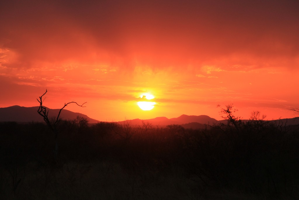 Por do sol em Madikwe. (Foto: M. Braga)