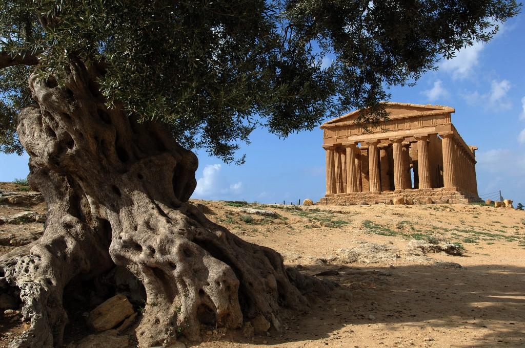 agrigento valle dei templi, sicilia, italia