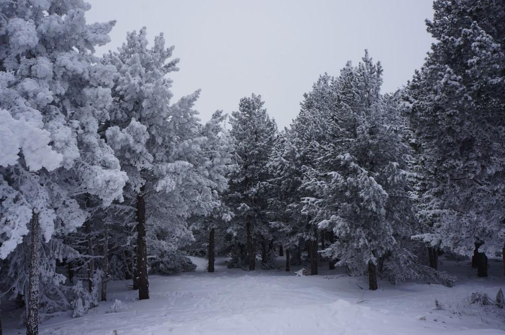 Paisagem na estação de esqui de Valdelinares - acervo pessoal
