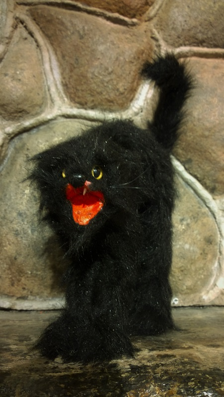 Gato_menor