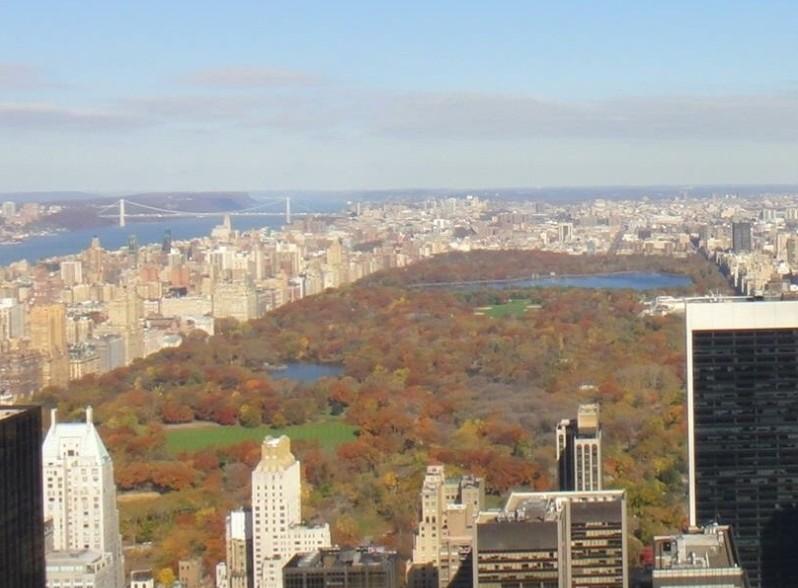 Muito 10 motivos para morar em Nova Iorque - BrasileirasPeloMundo.com NY89
