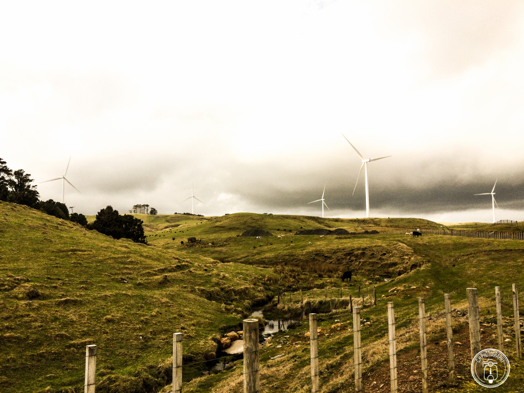 Wind Farm - Fazenda de energia Eólica