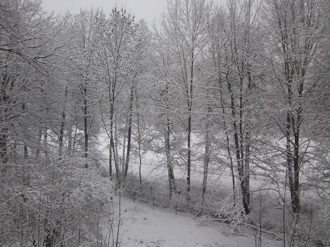 Caminhar na neve, uma atividade bem comum no inverno daqui.