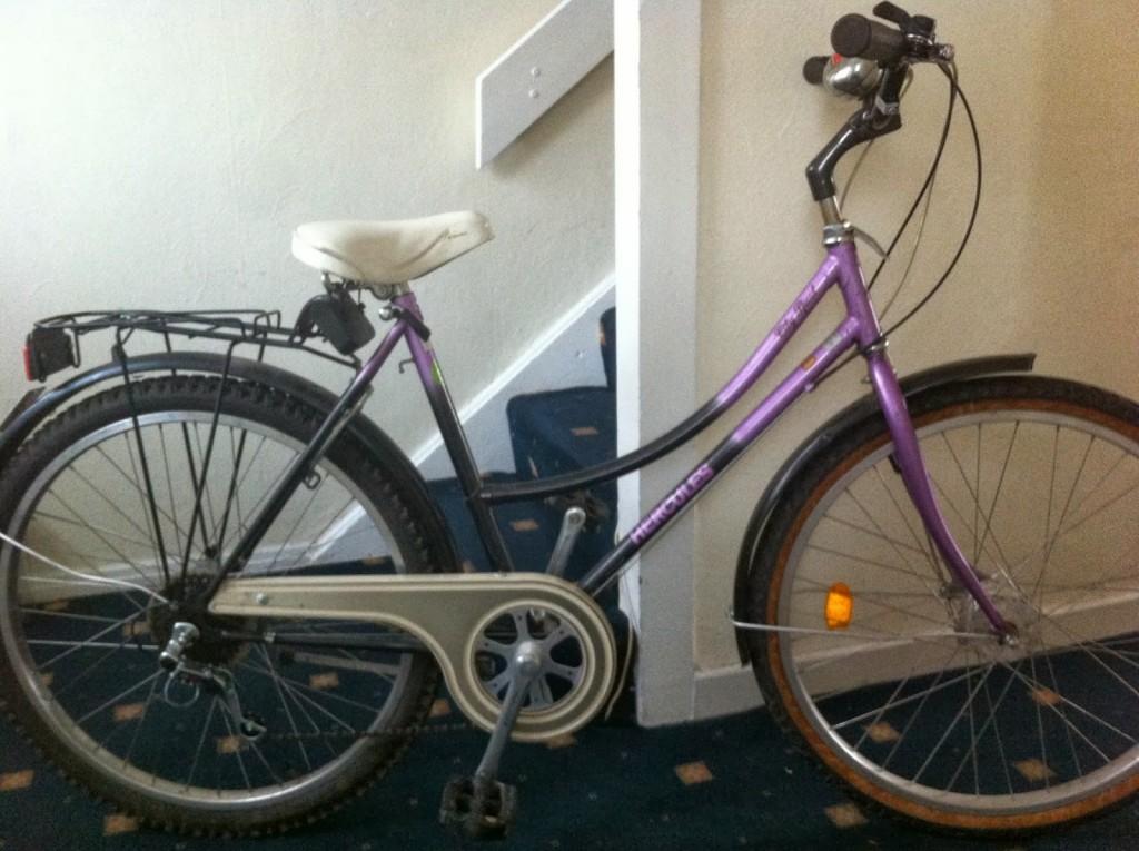 Minha primeira bicicleta