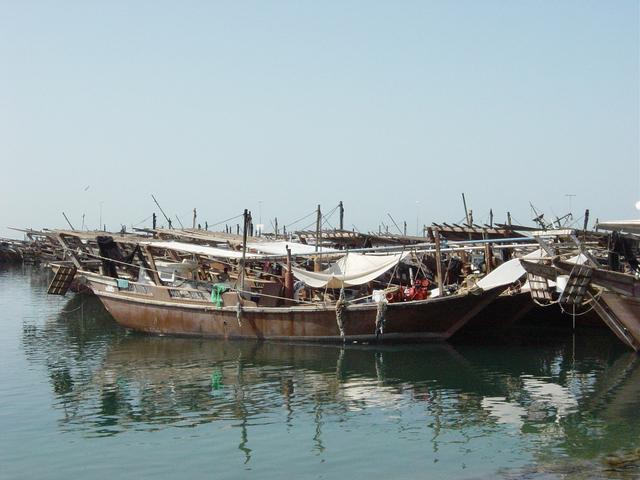 Dhows barcos tradicionais que eram usados para pesca e caça de pérolas.