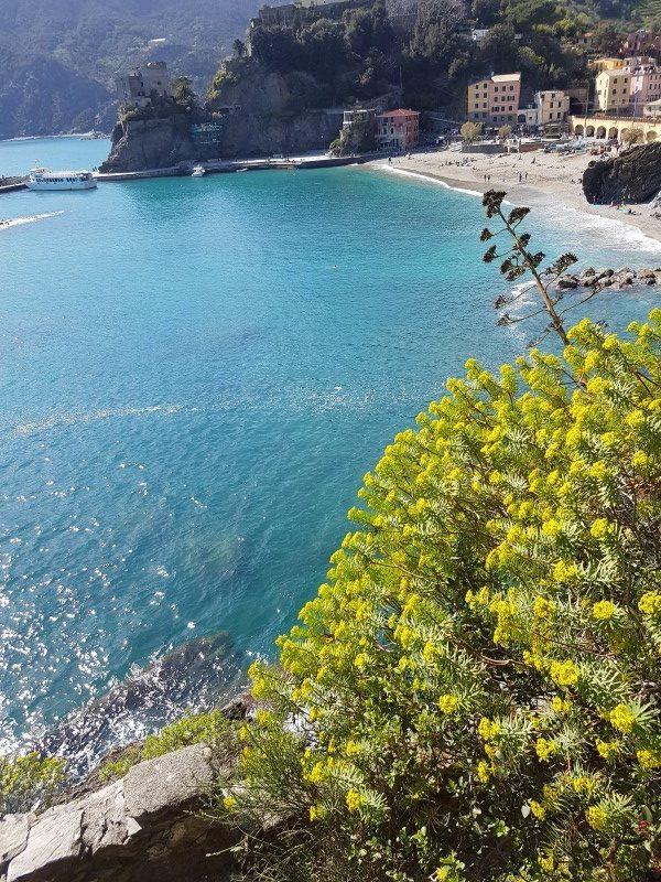 Fim de semana na Italia_Cinque Terre (5)