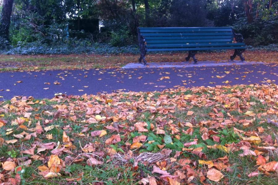 outono irlanda