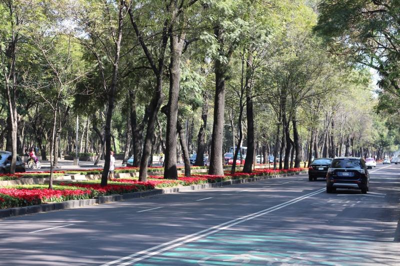 Domingo tranquilo na Avenida Paseo de la Reforma, que fecha parte como ciclovia neste dia.