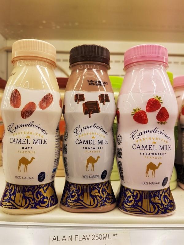 Leite de camelo