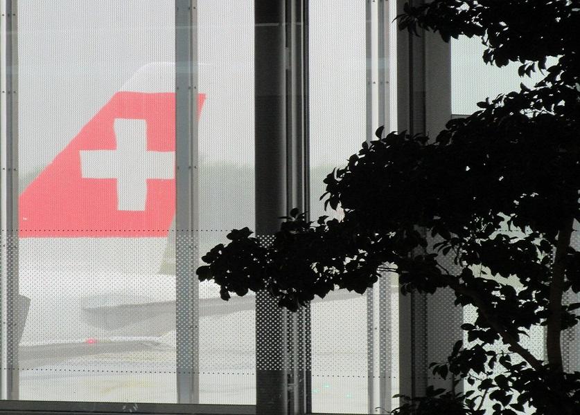 foto: www.minhasuica.com