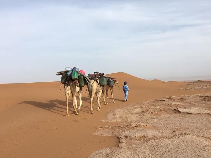 Roteiro pelo Marrocos: Trekking no Saara - Foto:acervo pessoal