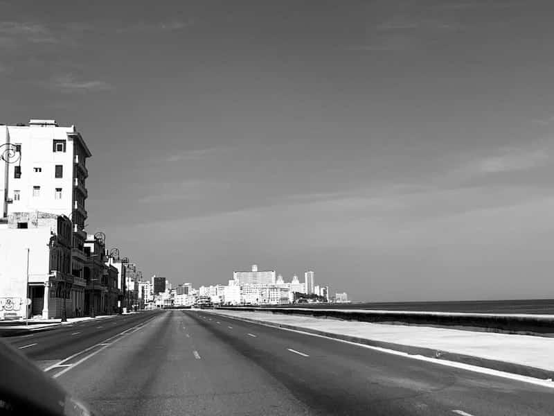 Foto de Havana em quarentena feita por minha amiga Suzi Travagali